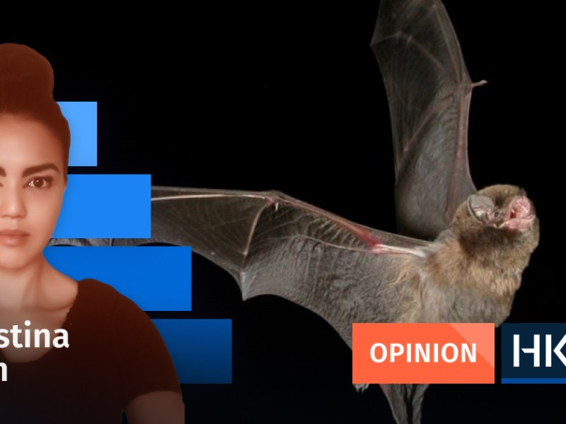 Christina Chan Bats don't kill people