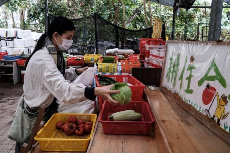 farming hong kong