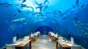 ITHAA restaurant sous la mer