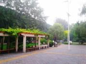The Orchard, un bol d'air frais à Pékin