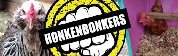 Chickens named Honkenbonkers!