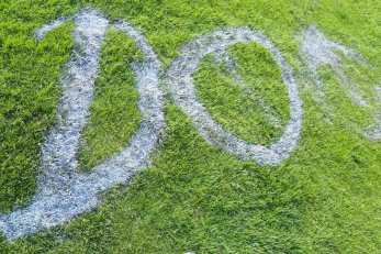 Unbenannt 1 1 - Vandalismus im Stadion - Knallköppe besprühen Rasen, Sprecherkabine und Tribüne