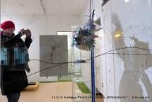 """P1180488 - Ausstellung """"Artenvielfalt"""" in der Ladenzeile eröffnet"""