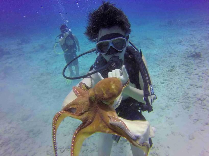 Honolulu scuba diving