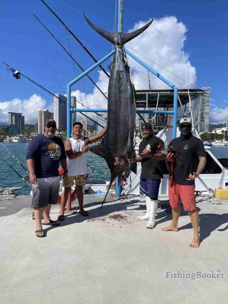 Oahu Pelagic Sportfishing Reviews