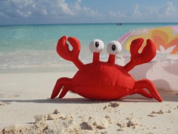 #5Crab