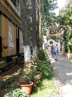 Iyengar Institute, Yoga