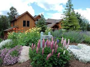 Full Service Landscaping Company in Summit County Front Lawn