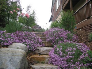 Stair Builder Frisco Landscaping Services