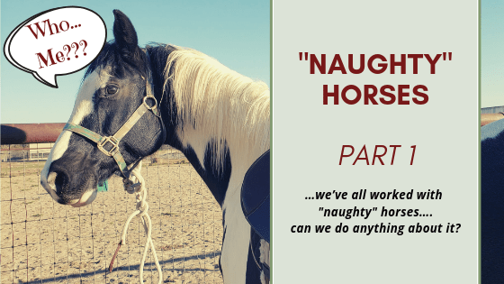 """""""Naughty"""" Horses- Part 1"""