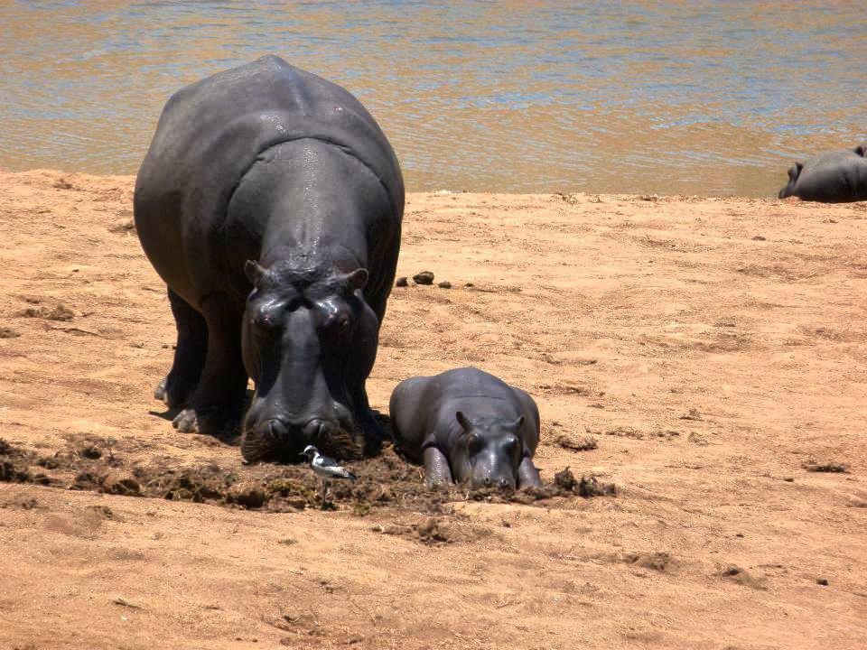 namibie-2011-www-hoogstinstravel-nl_19