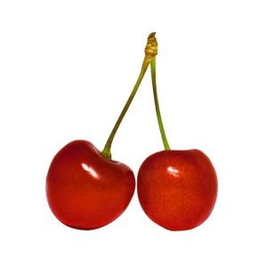 Fumari / Cherry(真っ黒に熟れたアメリカンチェリーの皮のような香り)