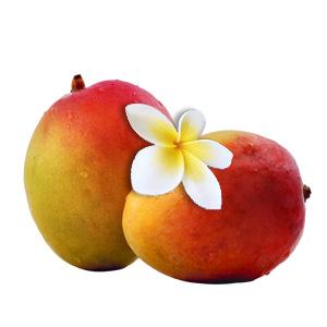 Fumari / Tropical Mango(クドすぎない穏やかなマンゴー、火の調節が厄介)