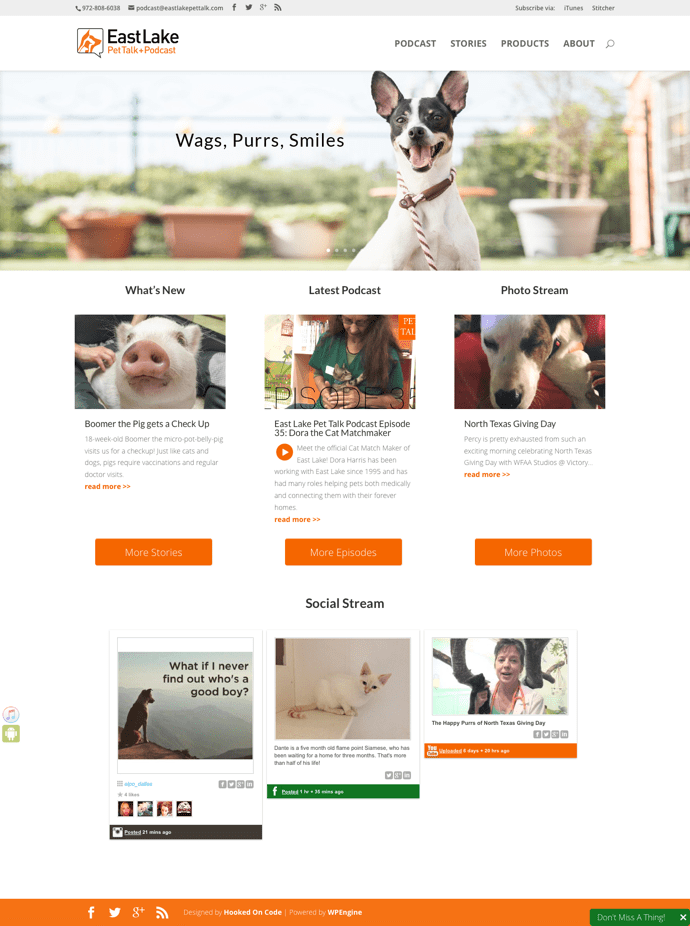 East Lake Pet Talk + Podcast website redesign