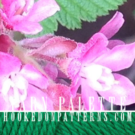 Yarn Palette Color Scheme 005 Feat Pink Flower