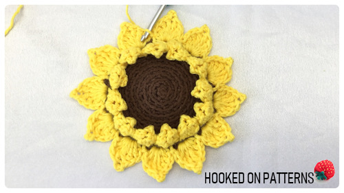 How to crochet a Sunflower coaster photo of the outer petals