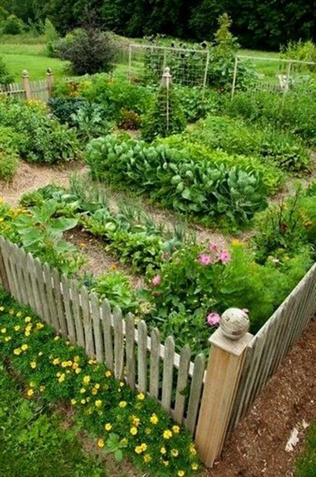 Inspiring Veggies Garden Layout For Your Outdoor Ideas 07