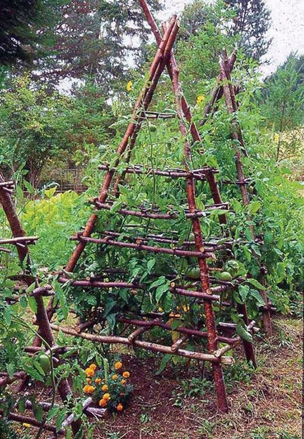 Inspiring Veggies Garden Layout For Your Outdoor Ideas 13
