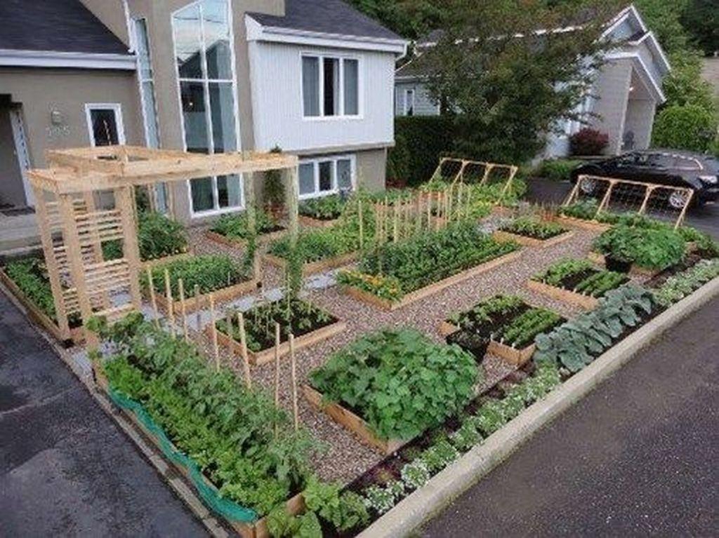 Inspiring Veggies Garden Layout For Your Outdoor Ideas 17