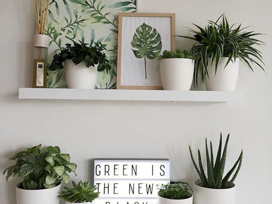 Popular Cheap Home Decor Ideas 30