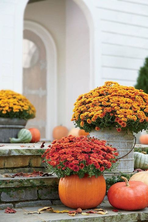 The Best Fall Outdoor Decor Ideas You Will Like 02