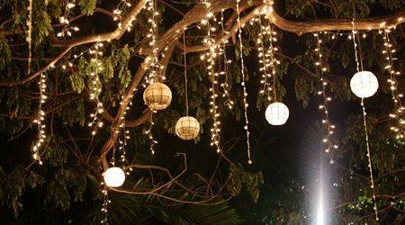 Outdoor Tree Lighting Ideas