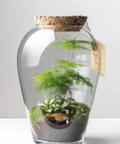 Biosféra – rastliny v skle 026