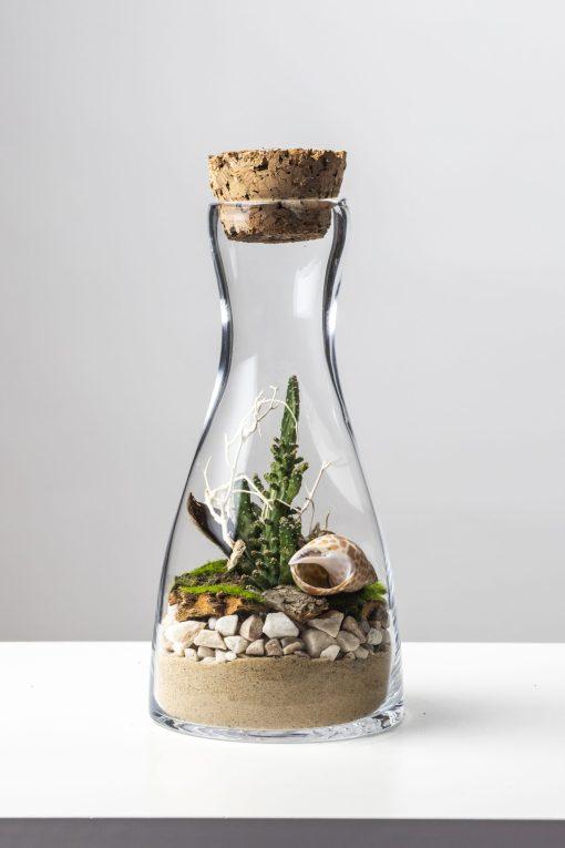 Biosféra - rastliny v skle 023