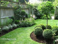 Awesome Fence With Evergreen Plants Landscaping Ideas 17