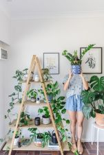 Beautiful Home Plants for Your House 29