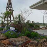 Texas Style Front Yard Landscaping Ideas 6