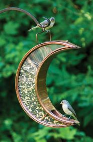 Creative DIY Bird Feeder Ideas 20