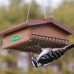 Creative DIY Bird Feeder Ideas 43