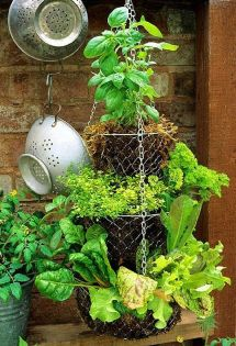 Simple DIY Vertical Garden Ideas 51