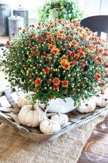 Trending Fall Home Decorating Ideas 94