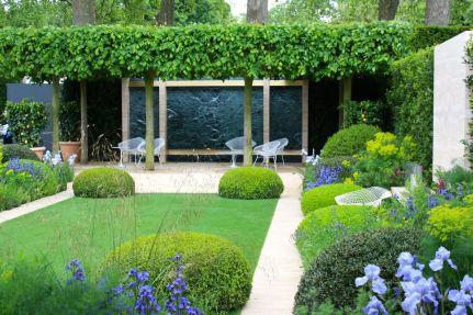Fascinating Evergreen Pleached Trees for Outdoor Landscaping 32