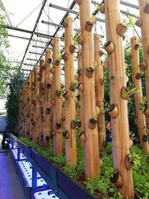 Inspiring Vertical Garden Ideas for Small Space 31