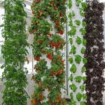 Inspiring Vertical Garden Ideas for Small Space 38