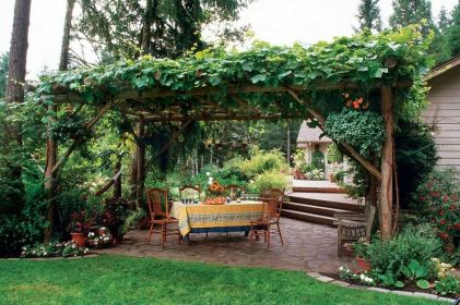 20 Awesome Tips and Ideas to Grow Grape in Your Home Backyard 21
