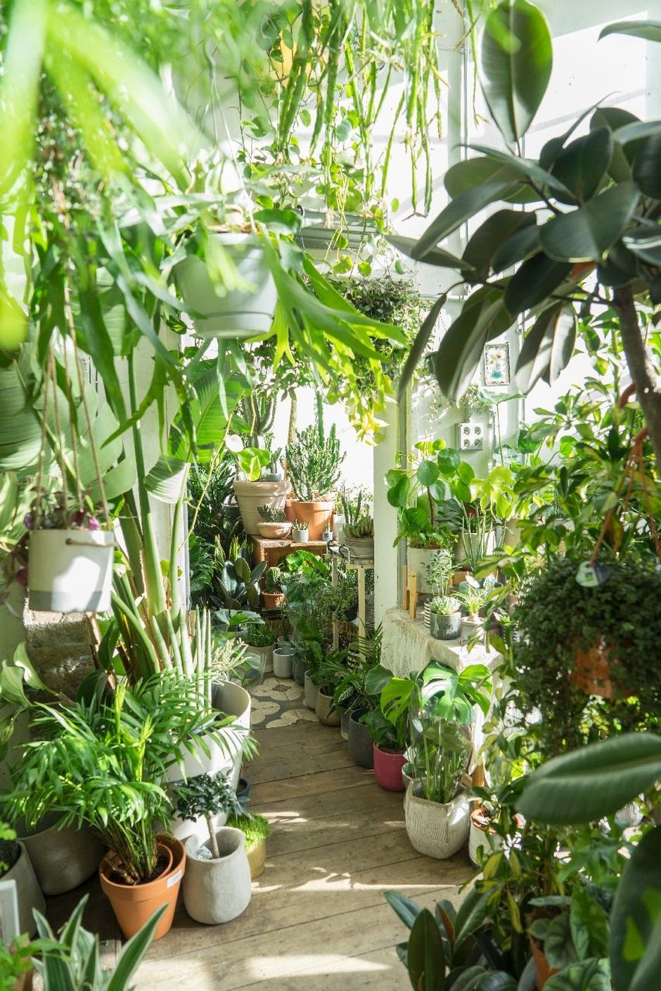 amazing indoor jungle decorations tips and ideas 15