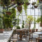 Amazing Indoor Jungle Decorations Tips and Ideas 18