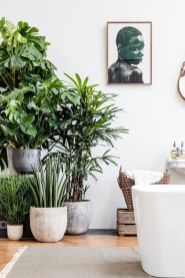 Amazing Indoor Jungle Decorations Tips and Ideas 34