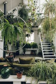 Amazing Indoor Jungle Decorations Tips and Ideas 48