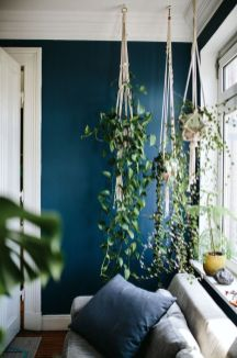 Amazing Indoor Jungle Decorations Tips and Ideas 56