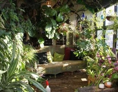 Amazing Indoor Jungle Decorations Tips and Ideas 57