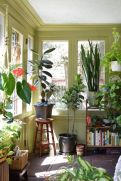 Amazing Indoor Jungle Decorations Tips and Ideas 58