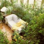 Amazing Indoor Jungle Decorations Tips and Ideas 59