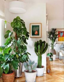 Amazing Indoor Jungle Decorations Tips and Ideas 67