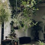 Amazing Indoor Jungle Decorations Tips and Ideas 8