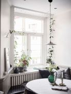 Marvelous Indoor Vines and Climbing Plants Decorations 13